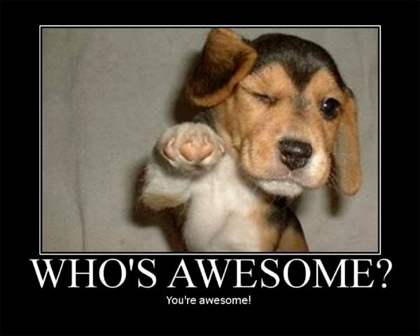 who's awesome.jpg
